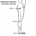 Gallbladder Meridian (hip to toe only)