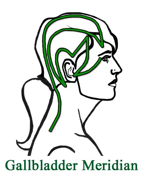 One-sided headaches Gallbladder meridian on head