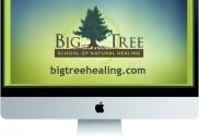 Big Tree website on computer
