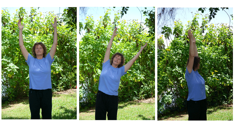 Stretches for Gallbladder Meridian
