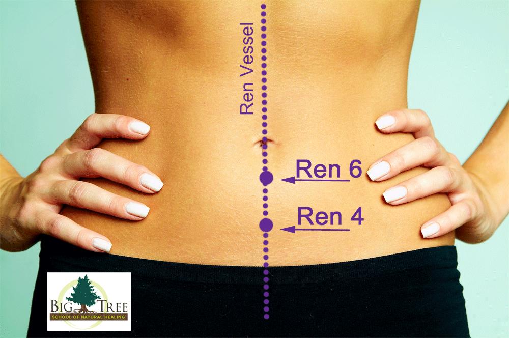 Ren-4-6 diagram