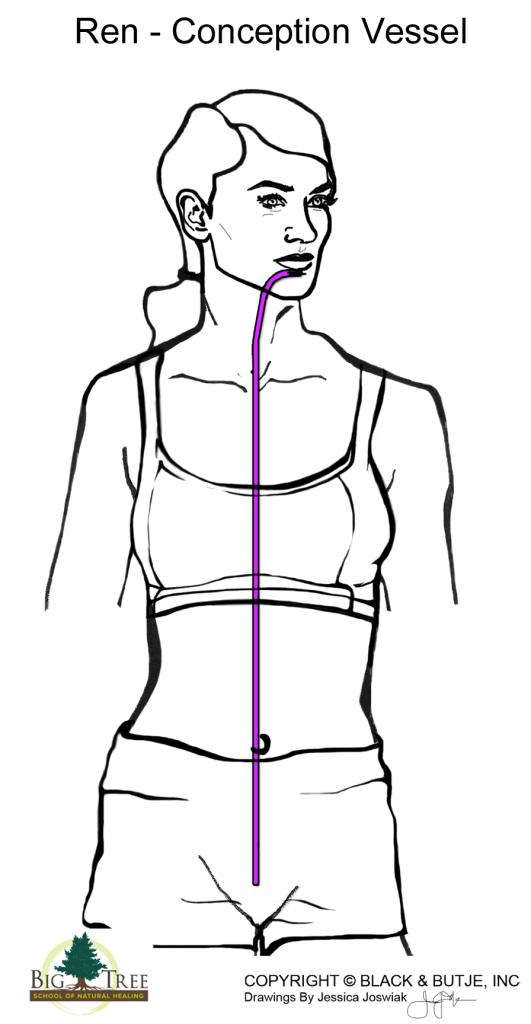 Ren-Conception Vessel diagram