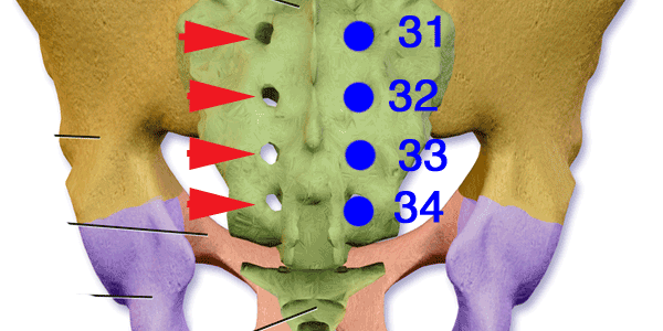 Bladder points to relieve back pain