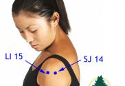 acupoints SJ 14 and LI 15