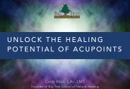 Healing Acupoints