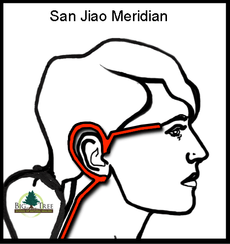 San Jiao Meridian