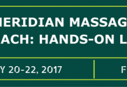 Meridian Massage Approach: Hands-on Level 1