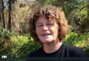 Hello from Cindy Black, Founder of Big Tree School of Natural Healing