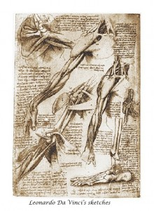 From Leonardo da Vinci's sketchbook