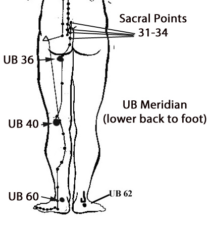 Sciatic Pain and Meridian Massage – Big Tree School of