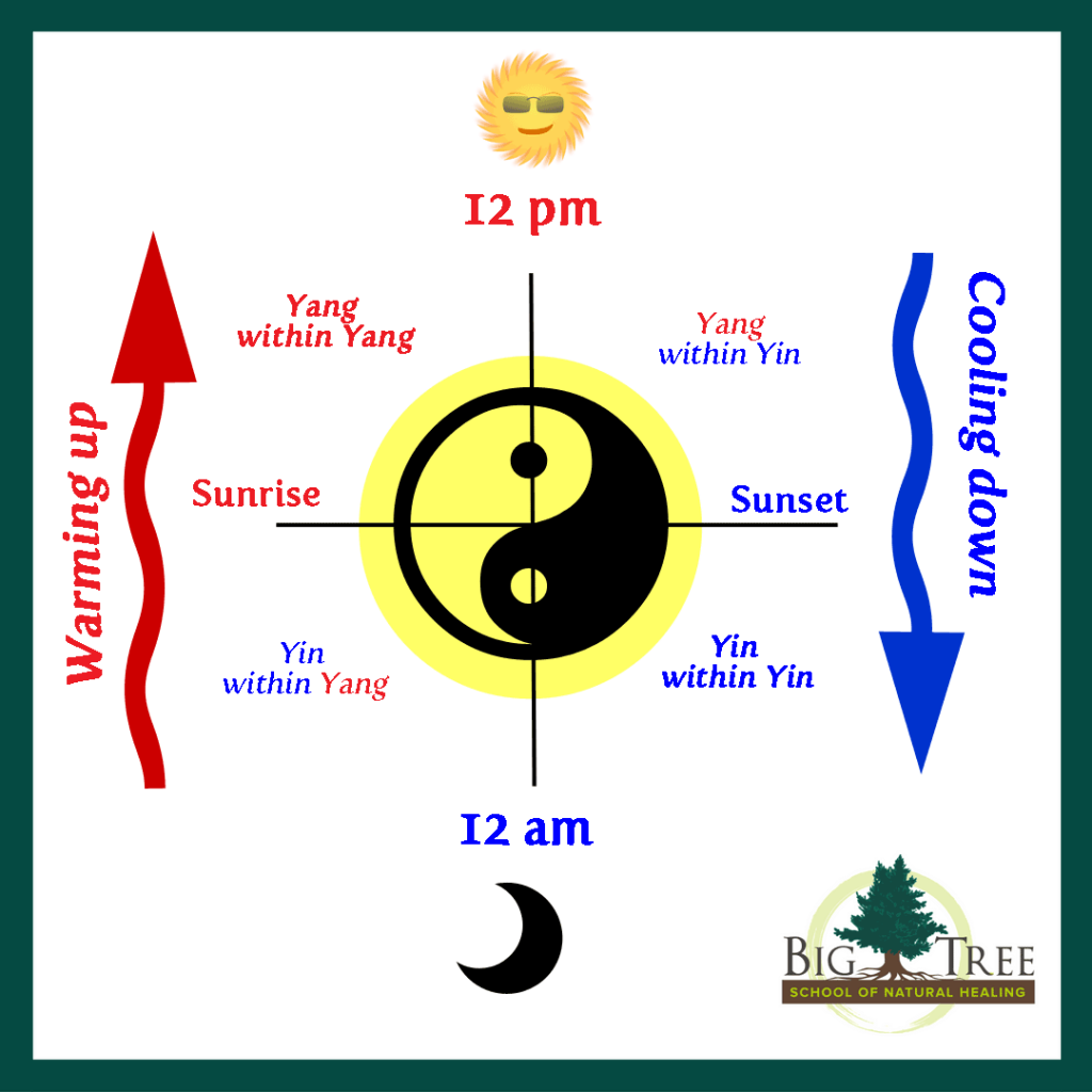 How Yin And Yang Shift Throughout A Day Big Tree School Of Natural Healing