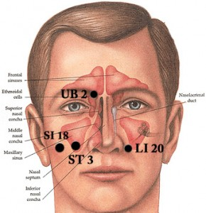 SinusPts