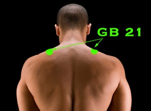 """GB 21 Jian Jing """"Shoulder Well"""""""