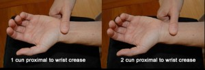 Measure 2 thumb widths from the wrist crease