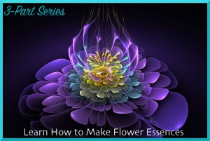Learn How to Make Flower Essences