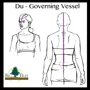 Du Governing Vessel