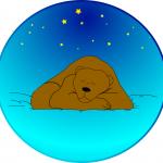 Bear-sleeping