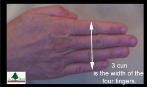 3-cun-equals 4 fingers picture