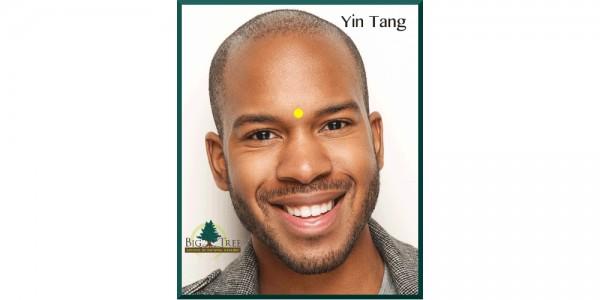 Yin Tang