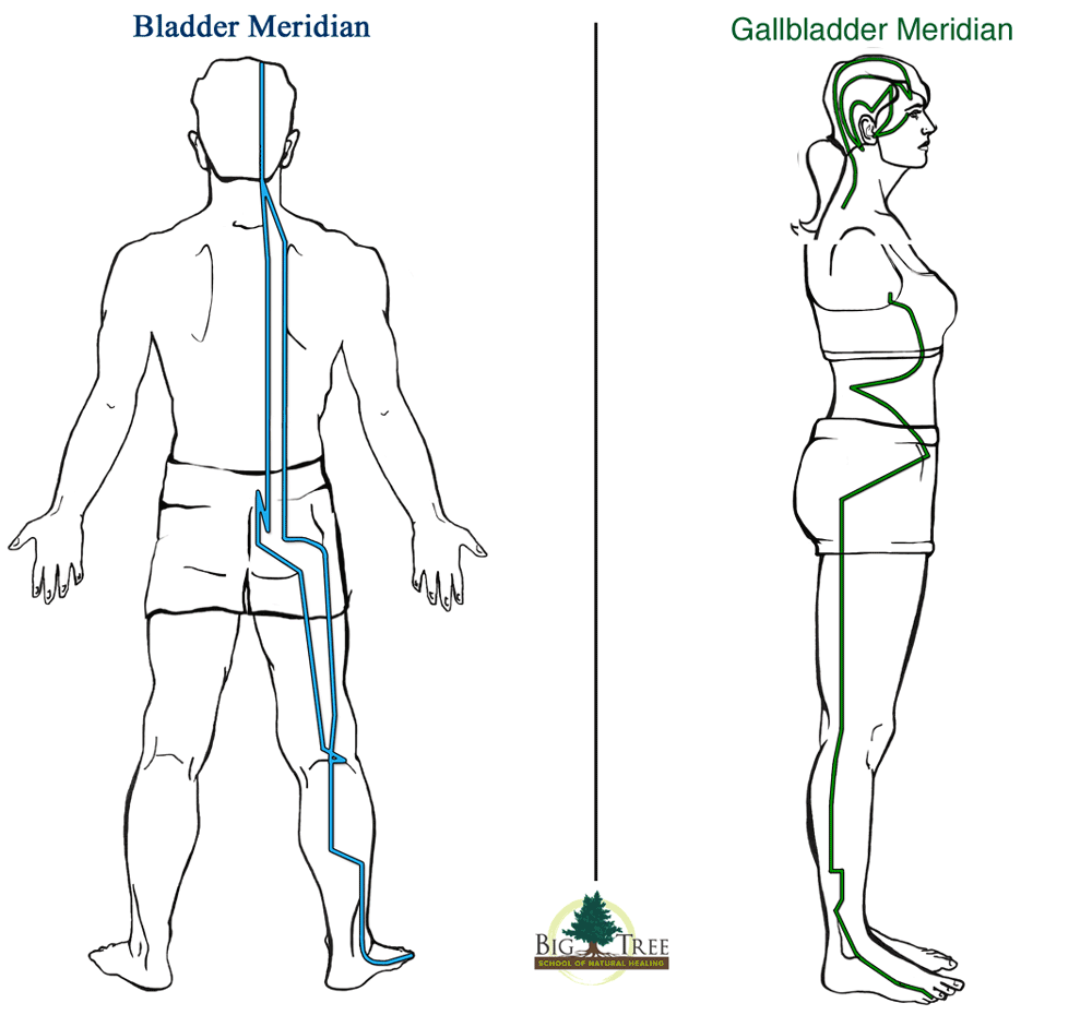 Bladder and Gallbladder Meridians for sciatica relief
