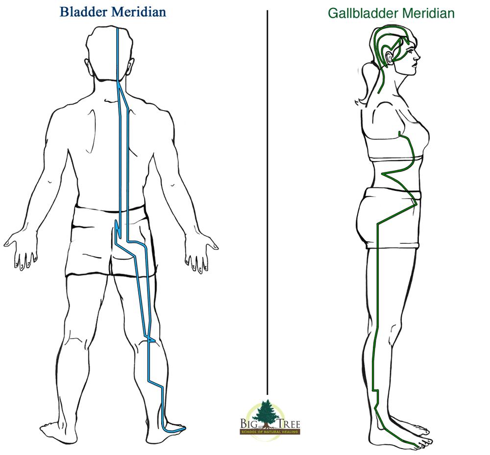Bladder and Gallbladder Meridians for sciatica relief