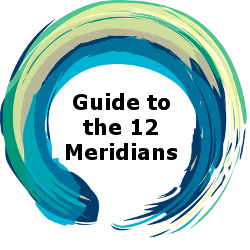 Guide to the 12 Meridians