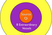 8 extraordinary vessels closer to source qi