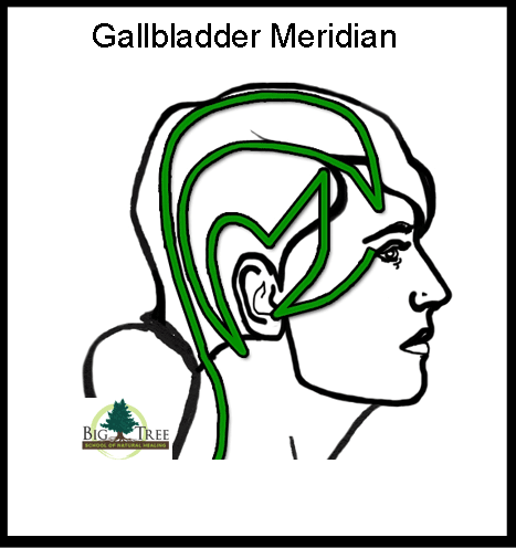 Trigeminal Neuralgia, the Meridian Massage Approach – Big Tree