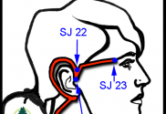 San Jiao acupressure points for Trigeminal Neuralgia