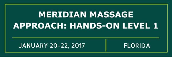Meridian Massage Approach: Hands-on Level 1
