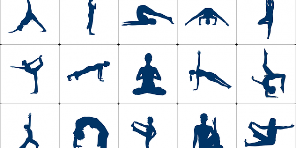 A few asanas (postures) of Yoga to balance Yin and Yang