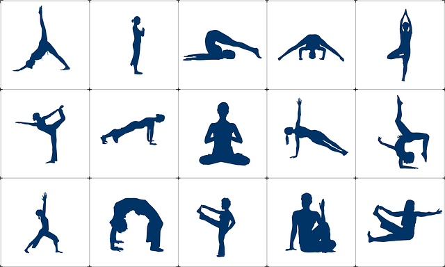 A few asanas (postures) of Yoga