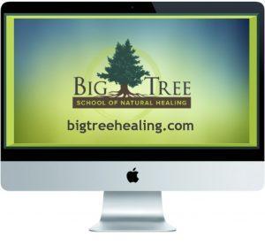 Big Tree Online