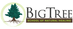 Big Tree School of Natural Healing