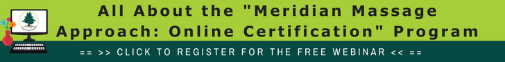 Meridian Massage Approach Online Certification