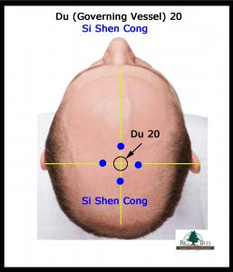 Si-Shen-Cong