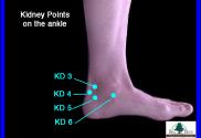 Kidney acupressure points 3, 4, 5, 6