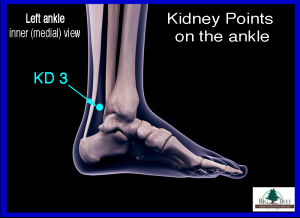 Kidney 3 Acupressure Point