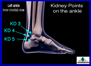 Kidney 5 Acupressure Point