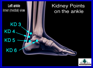 Kidney 6 Acupressure Point